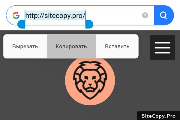 Копирование адрес сайта на смартфоне